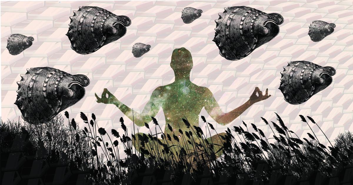 Мозг в банке: где у человека «сознание»