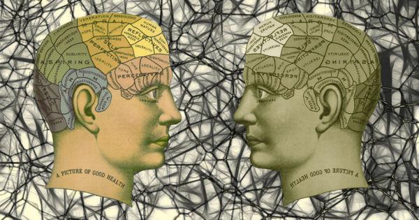 память мозга
